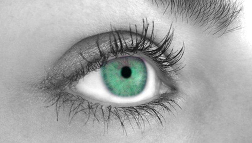 El iris es uno de los rasgos más notables del ojo.