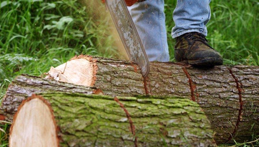 tree debarking tools | garden guides
