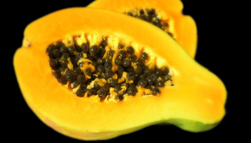 Paw paw has creamy, succulent flesh with a tropical flavor similar to banana and mango.