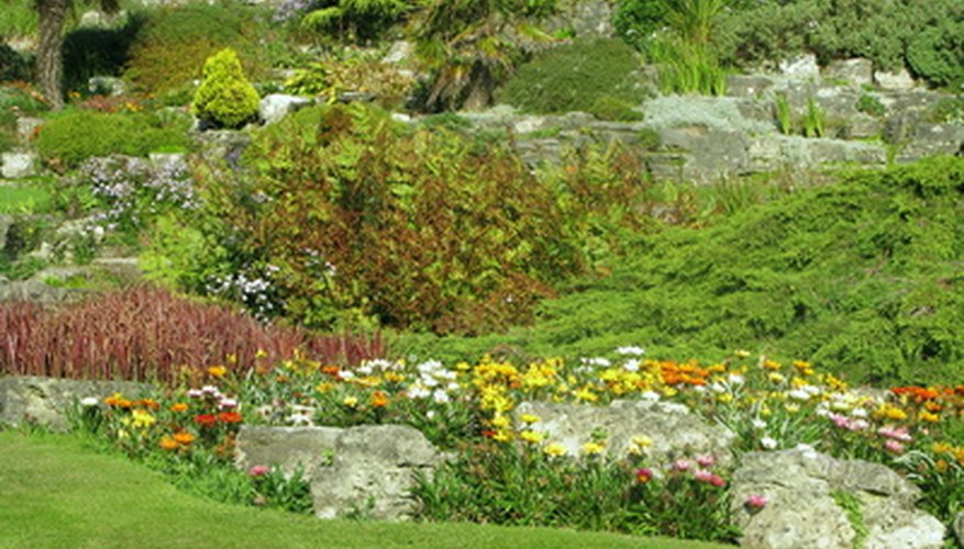 A large rockery in the sun