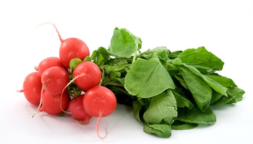 Plant radish seeds early in the season.