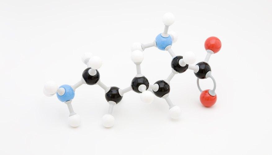 Amino acid model.