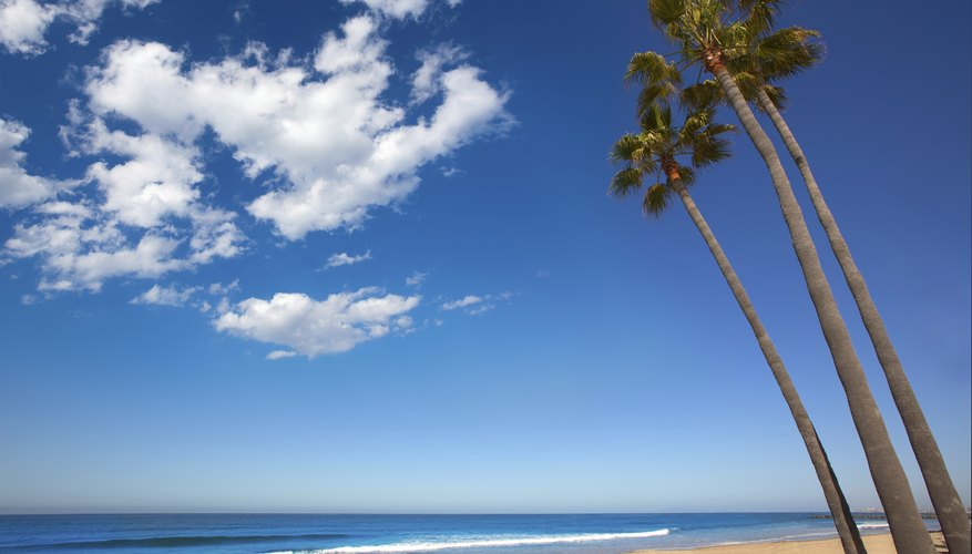 Teens can swim, surf and play on the beaches in Southern California.
