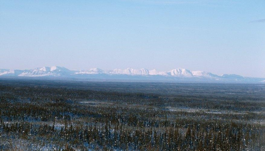 Frozen tundra.