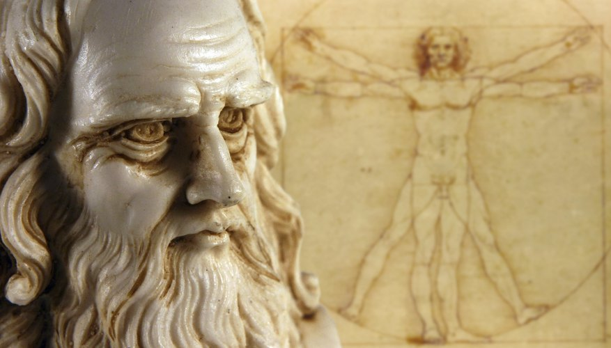 Leonardo da Vinci idealized the human body in the