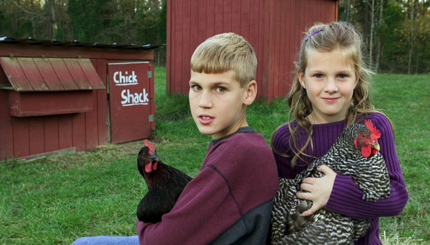 In some rural communities, young teens are an integral part of farm and home life.