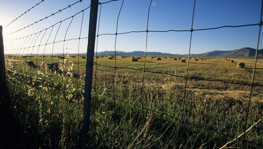 Puedes vender o refinanciar tu tierra.
