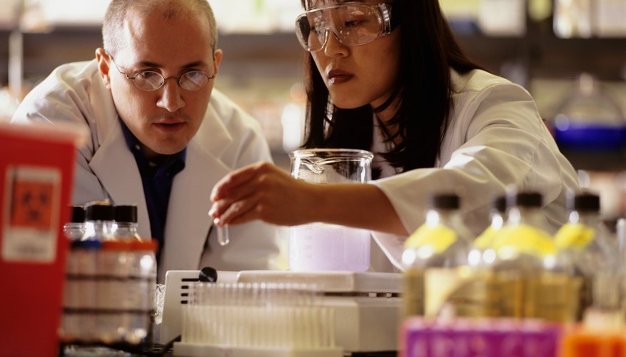 Two scientists conducting experiment in laboratory