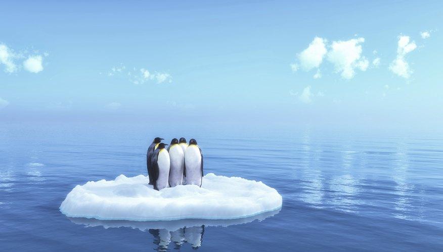 Pingüinos sobre un glaciar.