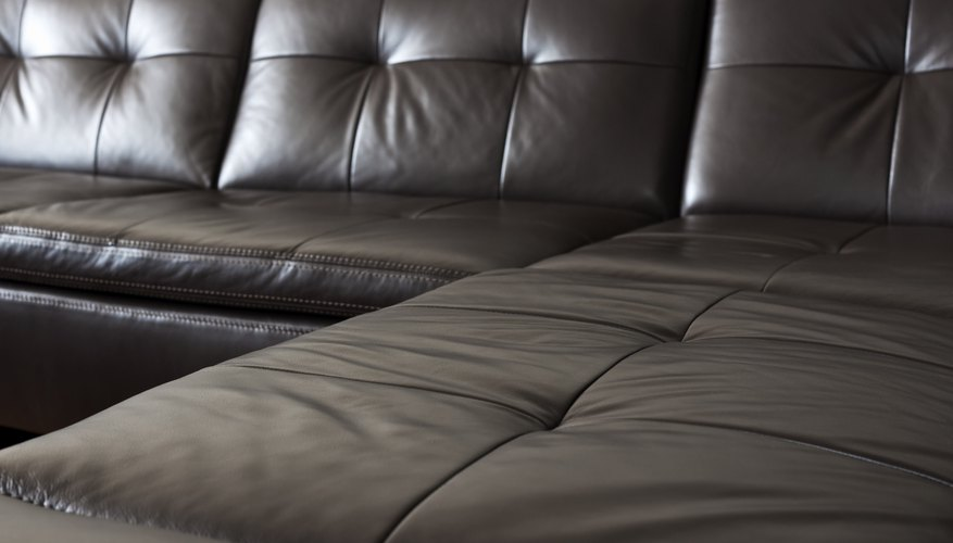 Pleasant Bed Bugs In Leather Couch Dailytribune Chair Design For Home Dailytribuneorg