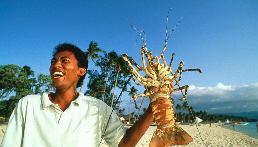 man holding giant crawfish