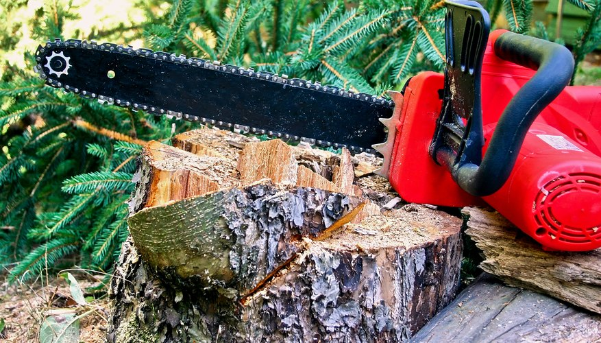 Chainsaw and trunk
