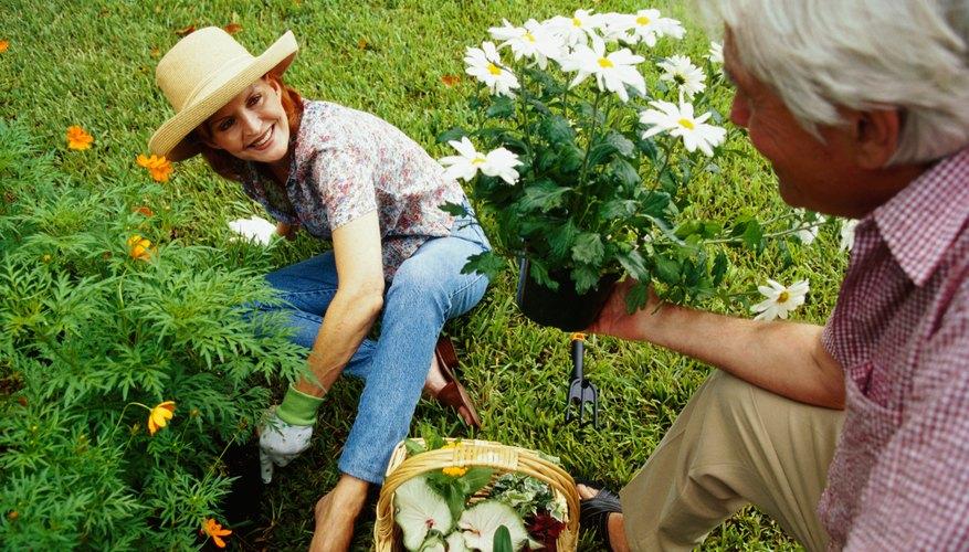 C mo vender plantas de vivero como un emprendimiento for Como iniciar un vivero en casa