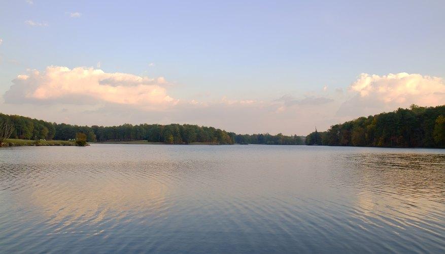 Fishing at Stone Mountain Park