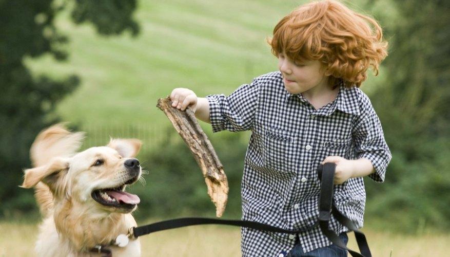 Jugar al aire libre es una manera efectiva para que los niños aprendan sobre las plantas y los animales.