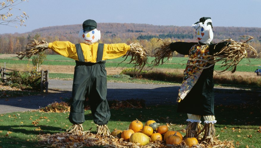 While scarecrows are useful as decorations they may also help protect gardens.
