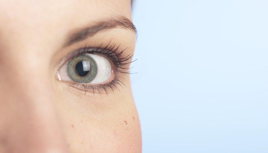 Las cejas destacan los ojos y el rostro.
