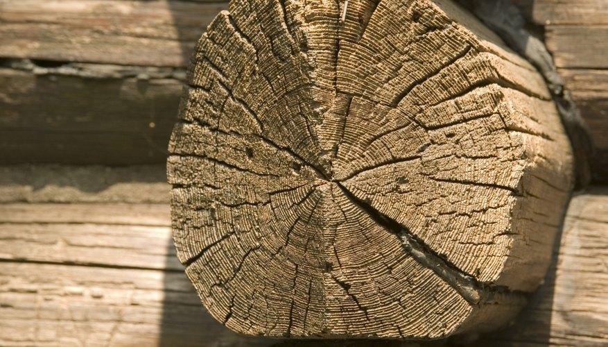 Las cabañas de madera son viviendas ecológicas.
