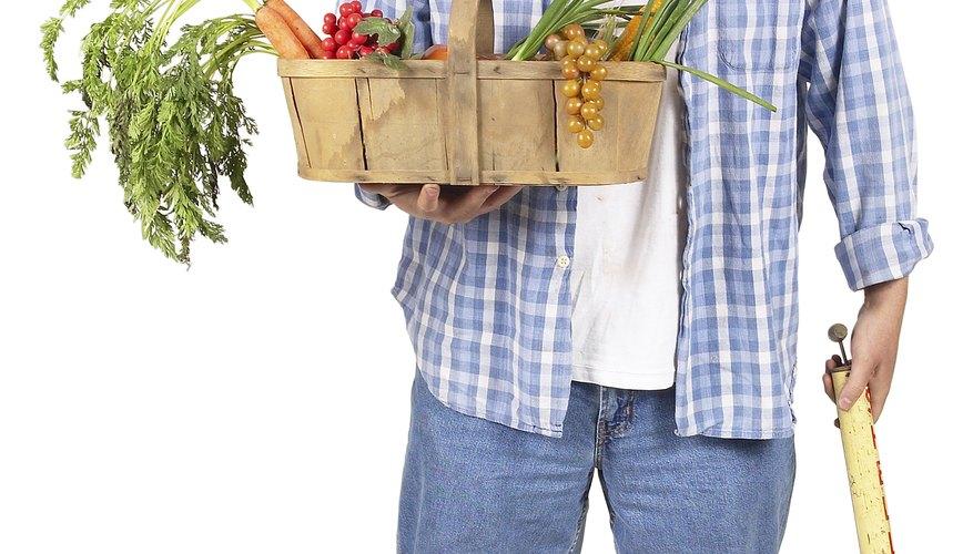Muchos insecticidas y pesticidas contienen xenoestrógenos.