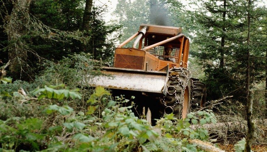 Bulldozer destroying forest