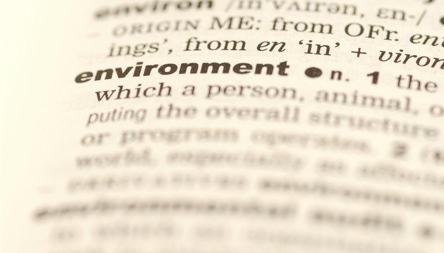 Aprender las raíces de las palabras te ayuda a entender el significado que no conoces.