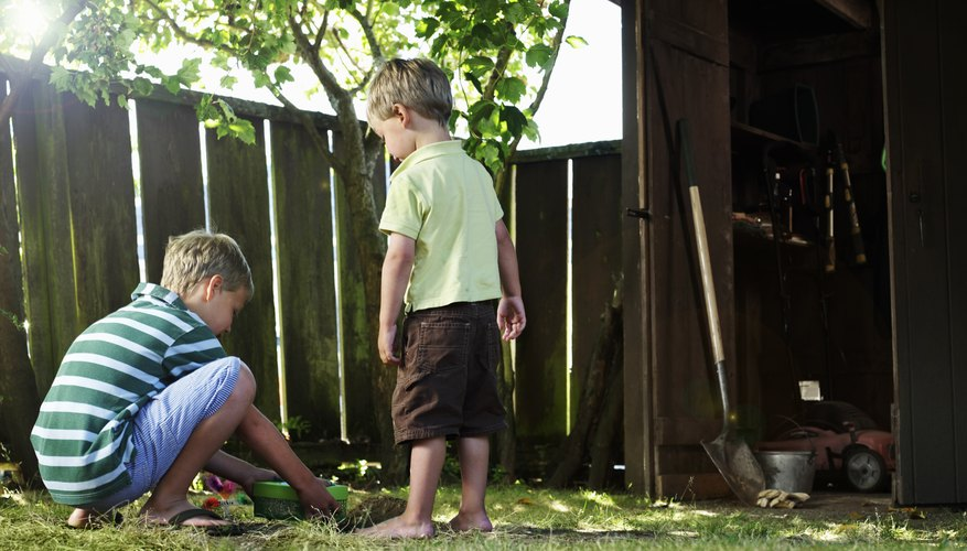 Boys playing in yard with wooden fence