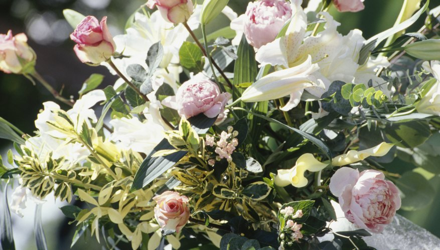 Matrimonio Simbolico Significado : Significado simbólico de la dalia geniolandia
