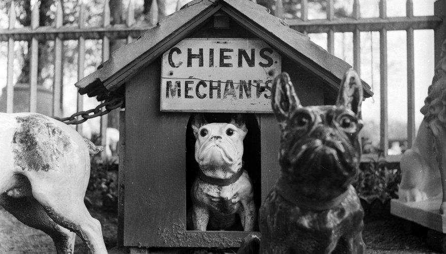 Construye tú mismo una casa para perros.