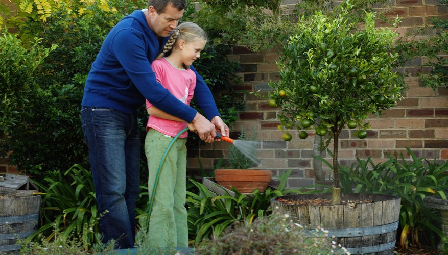 A father and young daughter spraying plants with a garden hose