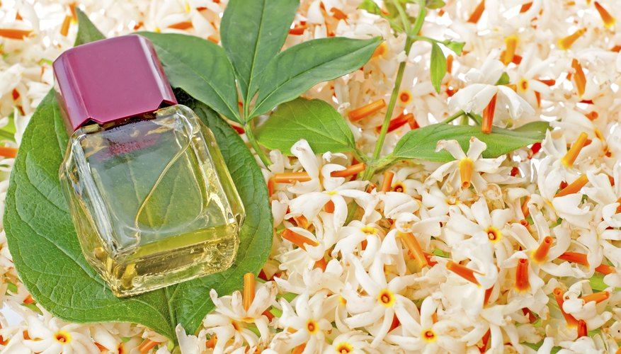 A bottle of jasmine oil and a leaf on a bed of jasmine flowers