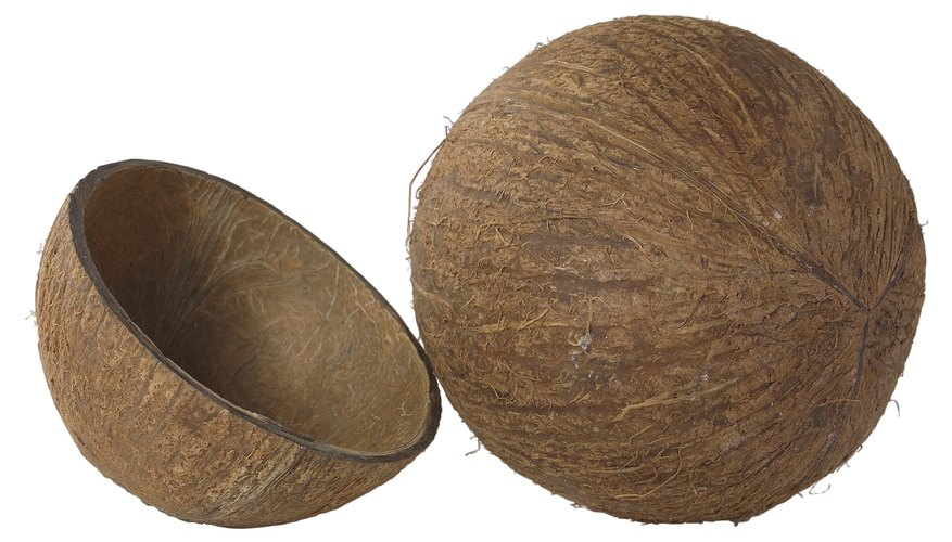 Las cáscaras de los cocos son elementos decorativos para proyectos de artesanías.