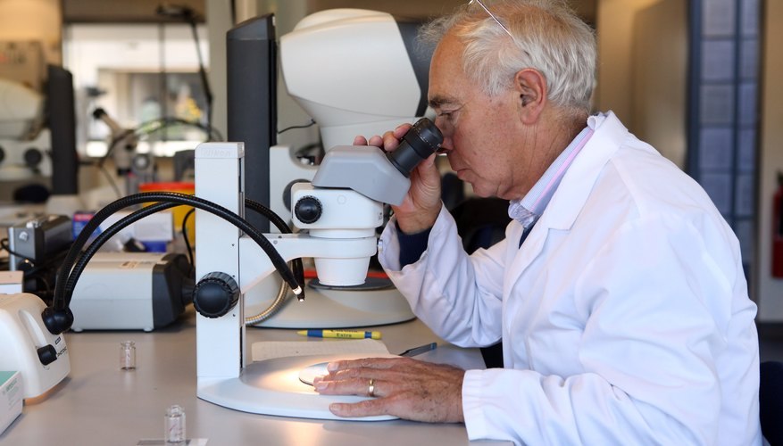 A biologist examining a sample through a microscope in a lab.
