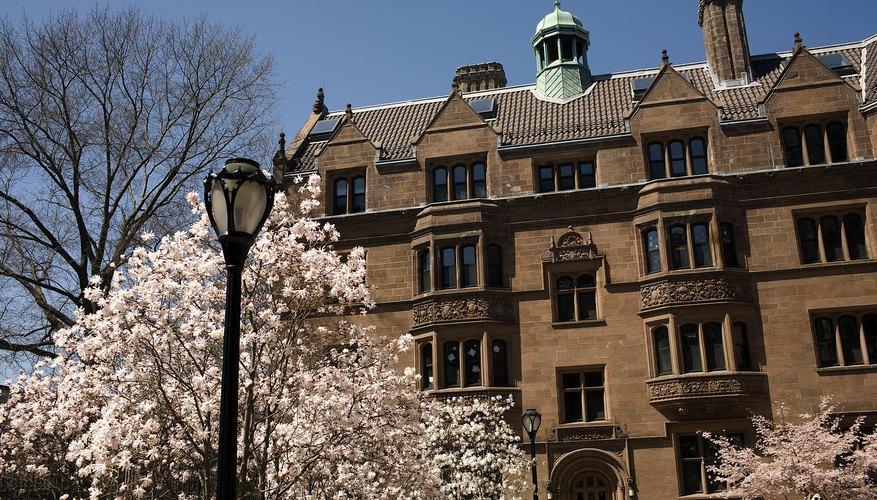 La Universidad de Yale.