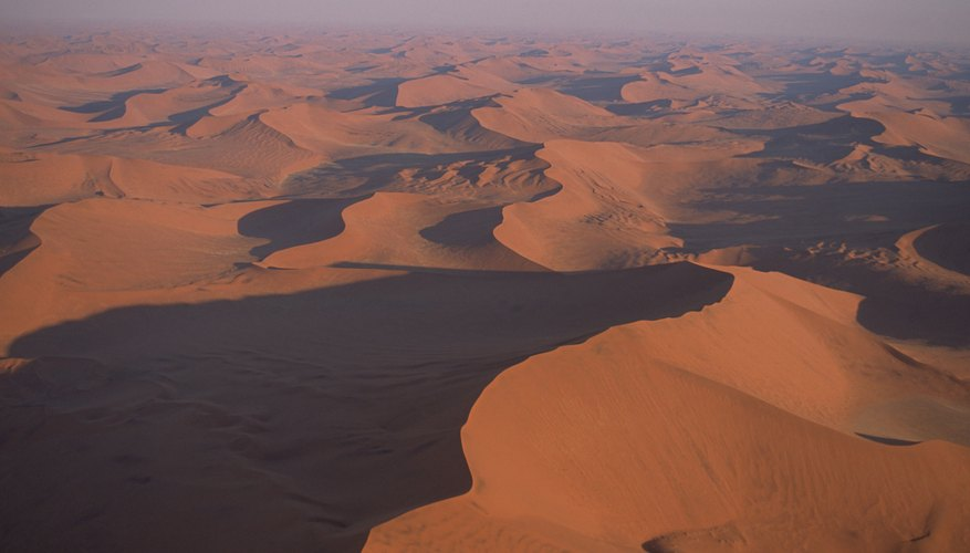 Coastal deserts like the Namib Desert experience mild temperatures.