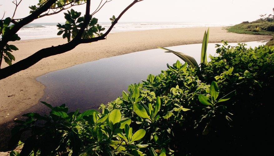 Bali es un destino increíble en Asia.