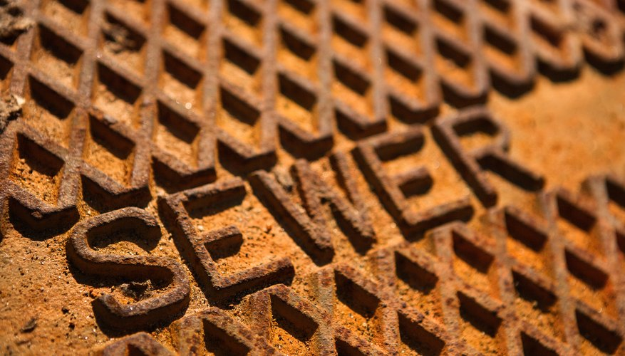 Sewer backups can damage personal items in a rental property.