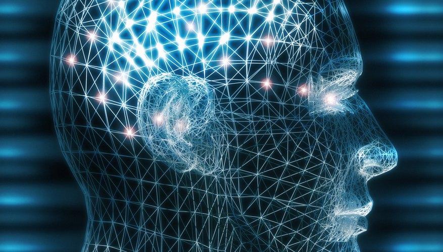 Las cuatro principales teorías de la personalidad son el psicoanálisis, el aprendizaje social, el auto crecimiento y la teoría basada en los rasgos.