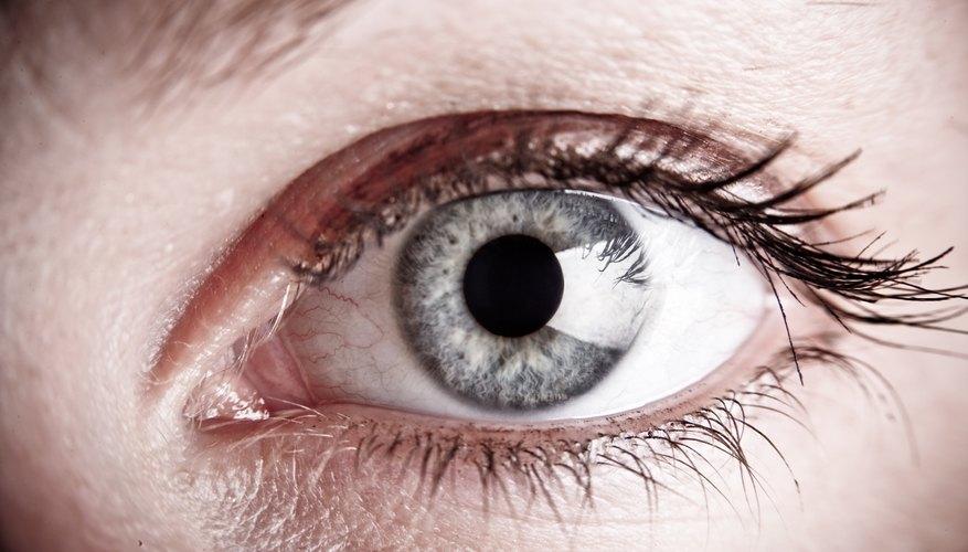 Todo lo que perciben nuestros sentidos es interpretado por el cerebro.