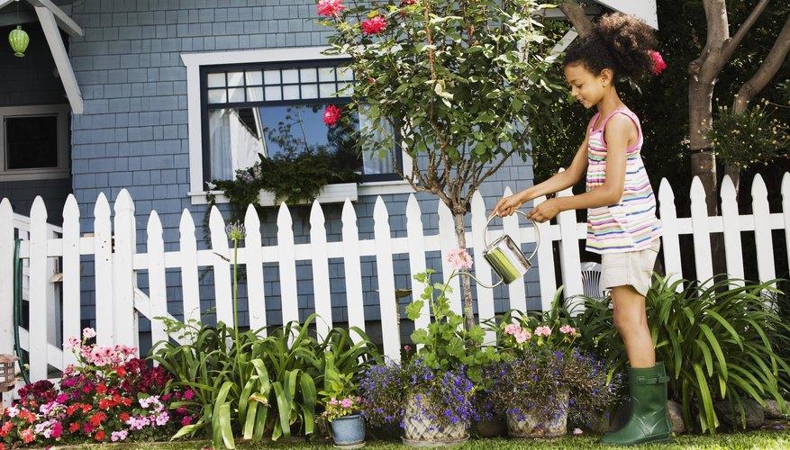 El fósforo en la harina de huesos promueve el crecimiento de las raíces,  como así también el crecimiento de las flores y las frutas.