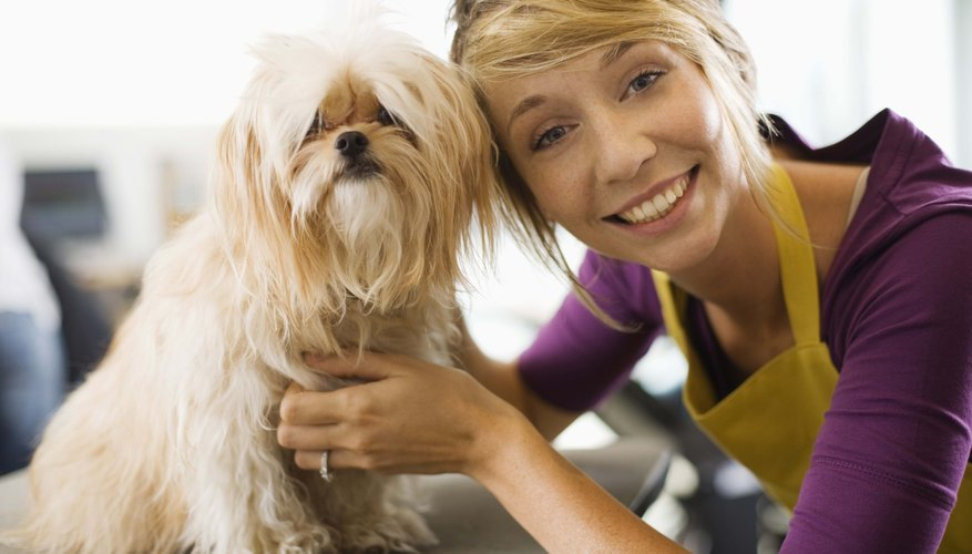 Many pet stores now work with local shelters to find homes for dogs and cats rather than selling puppies and kittens.