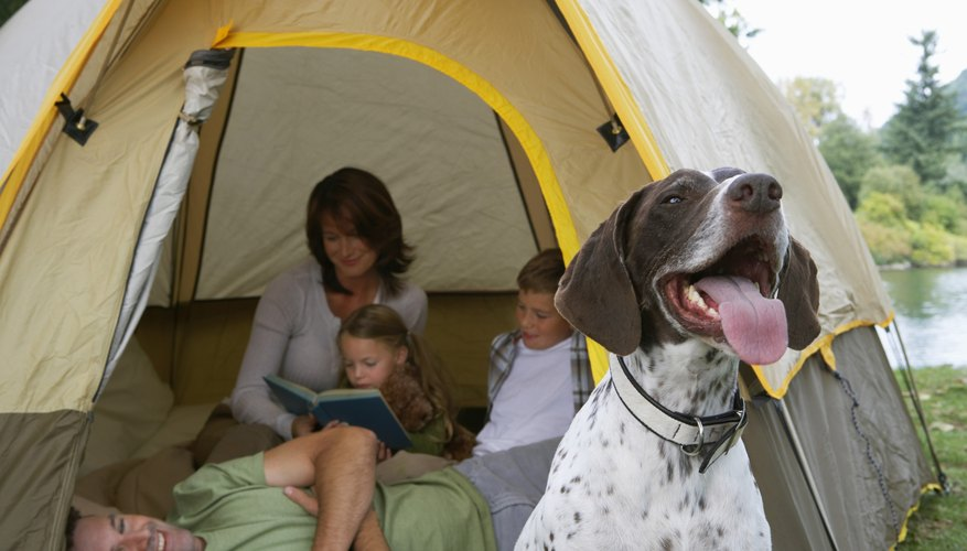Campgrounds First Come First Serve in California