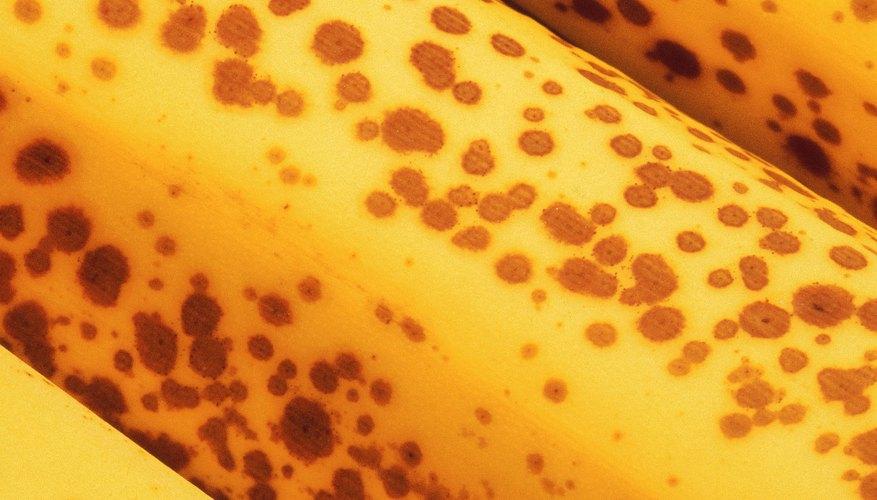 No tires tus plátanos maduros. Almacénalos en el congelador para su uso posterior.