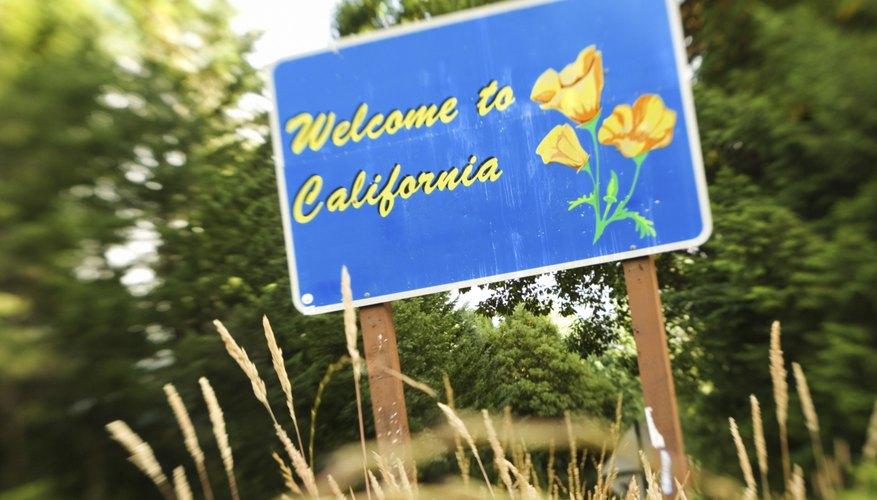 California parece a las familias como un buen lugar para los niños.