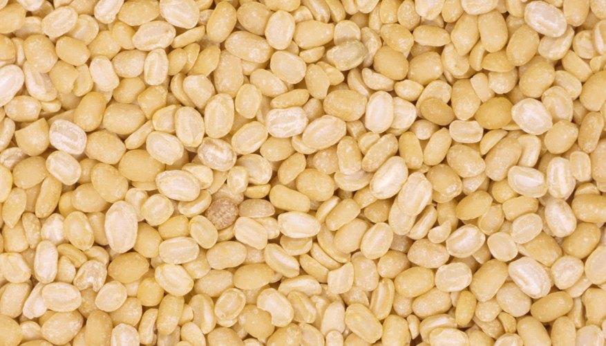 La latencia es un estado que evita que las semillas germinen.