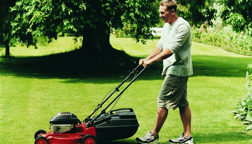 Power lawnmower.