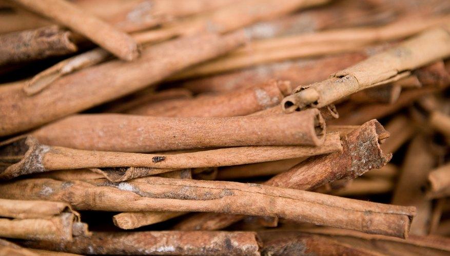 A close up of cinnamon sticks.