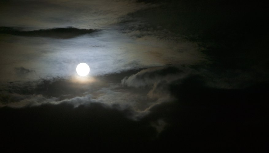 The moon's gravitational field affects oceanic tides.