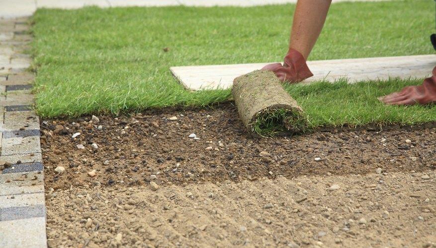 A Gardener Lays Down New Sod.