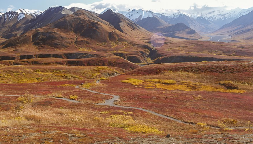 A view of alpine mountains and tundra.