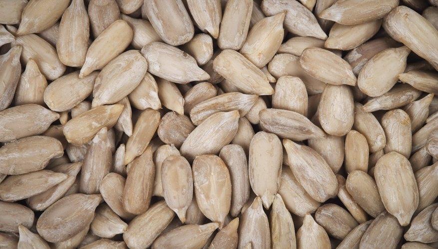 Close-up of sunflower seeds.